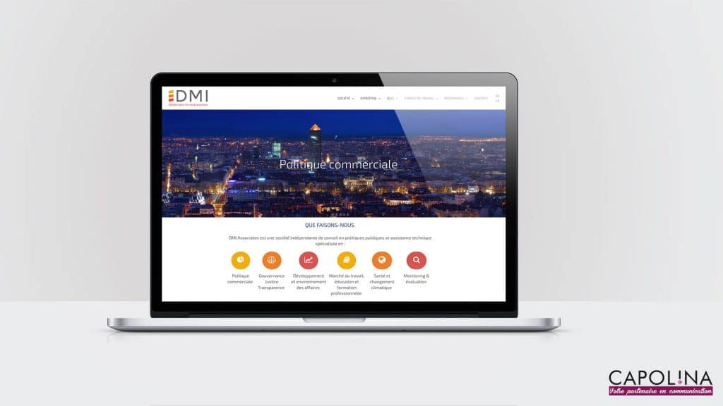 realisation site web societe conseil politiques publiques